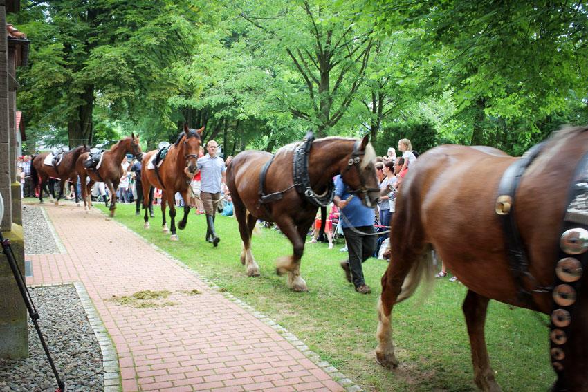 Kuss, Sprung und Jubelruf – die Pferdewallfahrt 2017